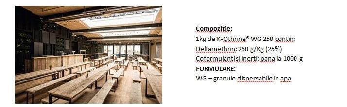 K-othrine wg 250 - compozitie