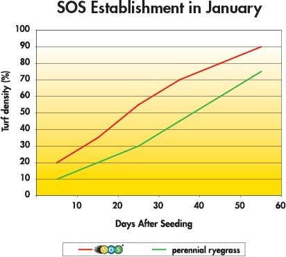 Barenburg SOS aplicare