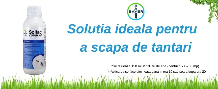 Solfac Combi